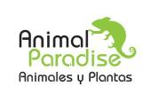 Animal Pardise